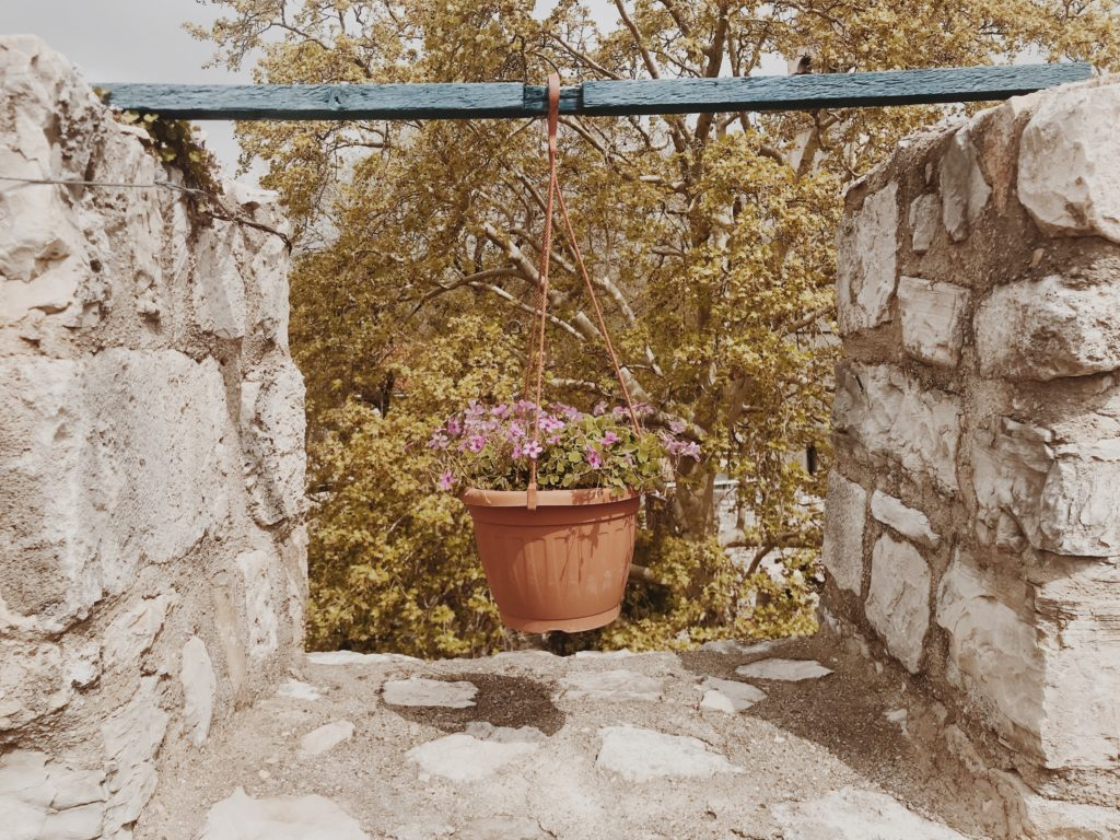 Outdoor hanging flower baskets