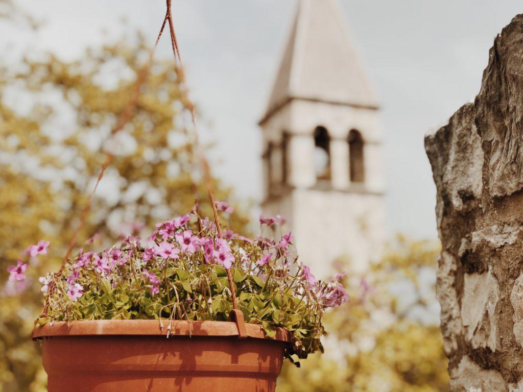 Old Flower Vase Ideas Awesome Hanging Flower Vase Using Old Bucket