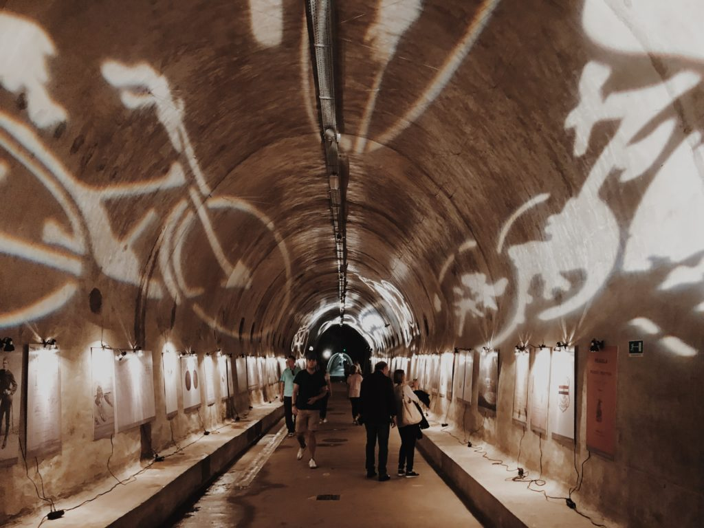 Tunnel Grič bicycle exhibition