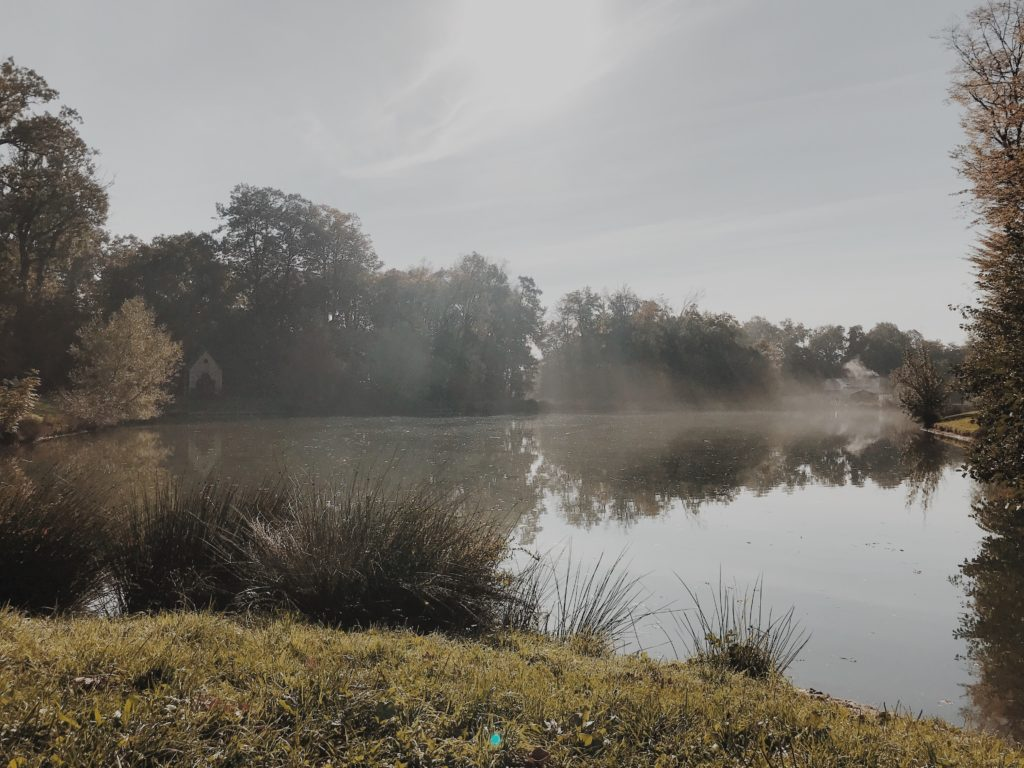 Fog moving slowly at a calm lake in early morning