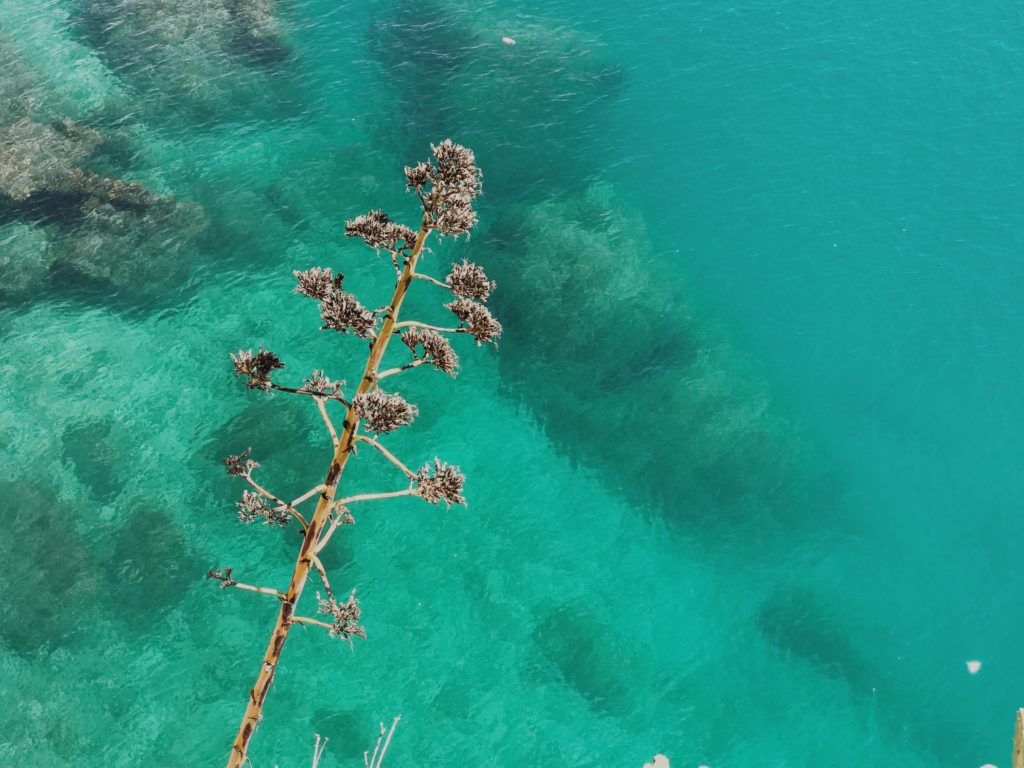 Top view of beautiful turquoise ripple on the sea surface