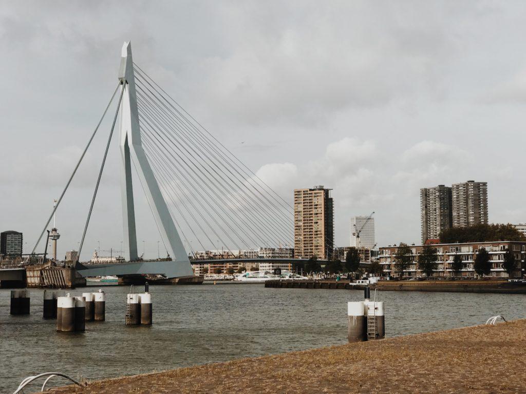 Rotterdam on bike Willemsbrug Bridge
