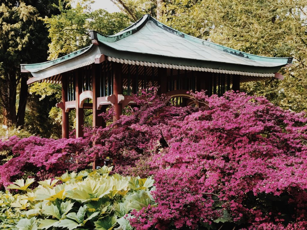 Botanical Garden Berlin Japan pavilion