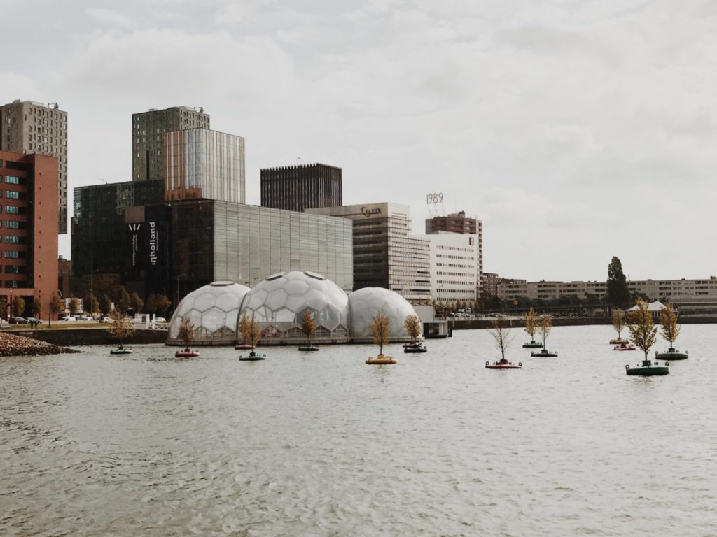 The floating pavilion in the Rijnhaven in Rotterdam, Nederlands