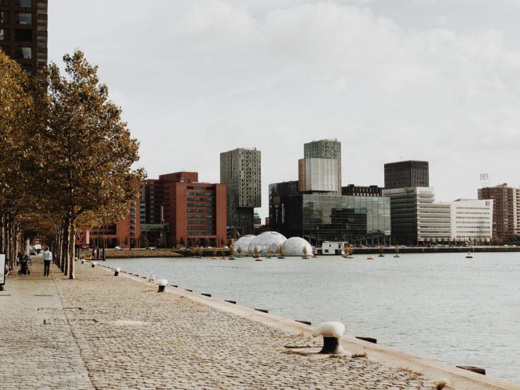 View on Rijnhaven Marina, Rotterdam, Nederlands