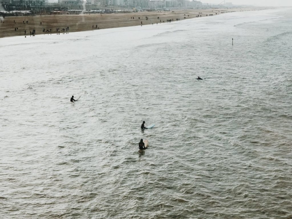 Surfers in water of North Sea, The Hague (Den Haag), Holland, Netherlands