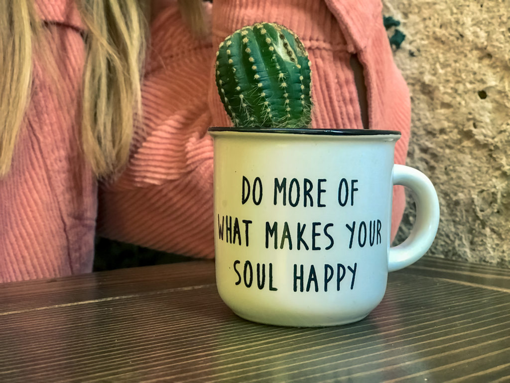 Do more of what makes your soul happy Mug